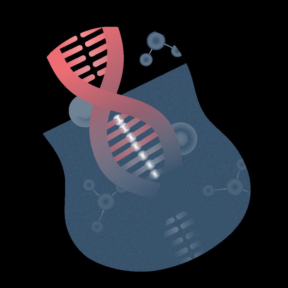 andromedi fragmentacion de adn espermatico 01